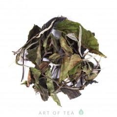 Белый чай с Древних деревьев, 2019, Таиланд